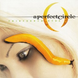 PERFECT CIRCLE - THIRTEENTH STEP