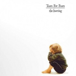 TEARS FOR FEARS -THE HURTING