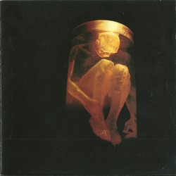 ALICE IN CHAINS - NOTHING SAFE- THE BEST OF THE BOX