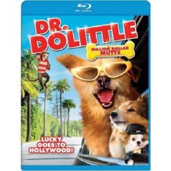 DR DOLITTLE - MILLION DOLLAR MUTTS