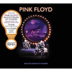PINK FLOYD - DELICATE SOUND THUNDER