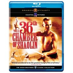 THE 36 TH CHAMBER OF SHAOLIN